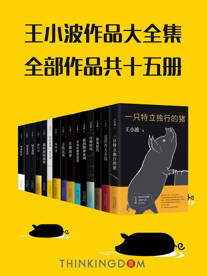 王小波真正大全集(套装共15册)