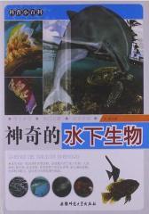 科普小百科:神奇的水下生物