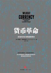 货币革命:改变经济未来的虚拟货币