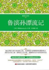 鲁滨孙漂流记(精装全译本,权威翻译)