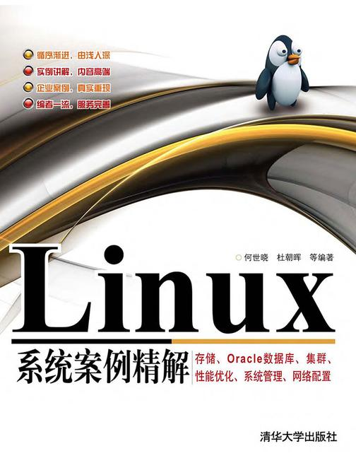 Linux系统案例精解——存储、Oracle数据库、集群、性能优化、系统管理、网络配置