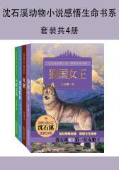 沈石溪动物小说感悟生命书系(《狼国女王》、《红豺》、《雪域豹影》、《五彩龙鸟》)(套装共4册)