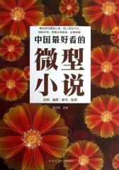 中国 好看的微型小说