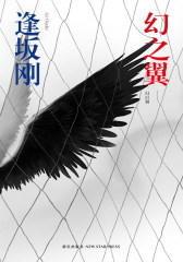 幻之翼(试读本)