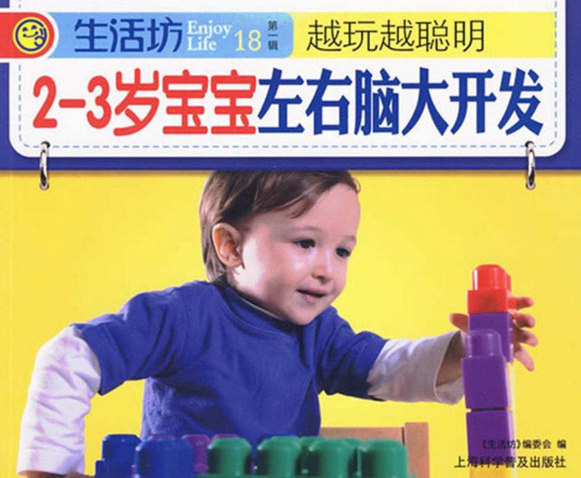 2-3岁宝宝左右脑大开发