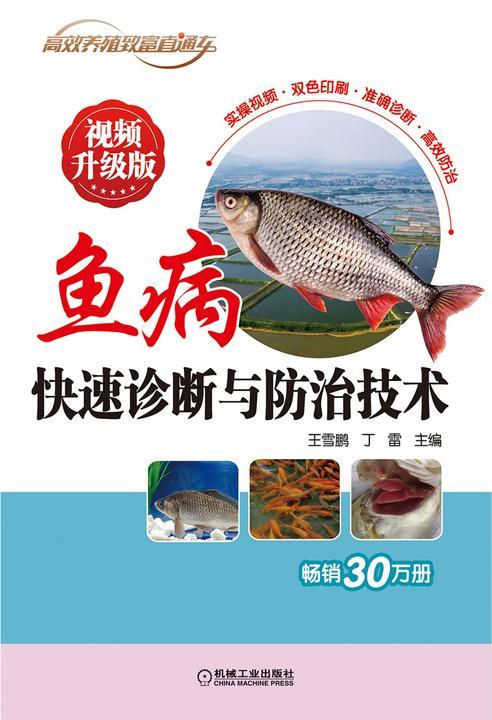 鱼病快速诊断与防治技术 视频升级版