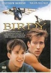 鸟人(影视)