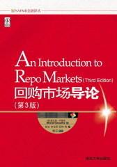回购市场导论(第3版)(试读本)(仅适用PC阅读)