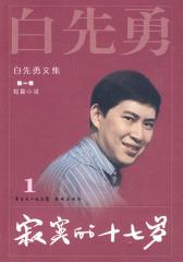 白先勇文集①寂寞的十七岁(2009)(试读本)