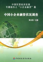 中国小企业融资状况调查