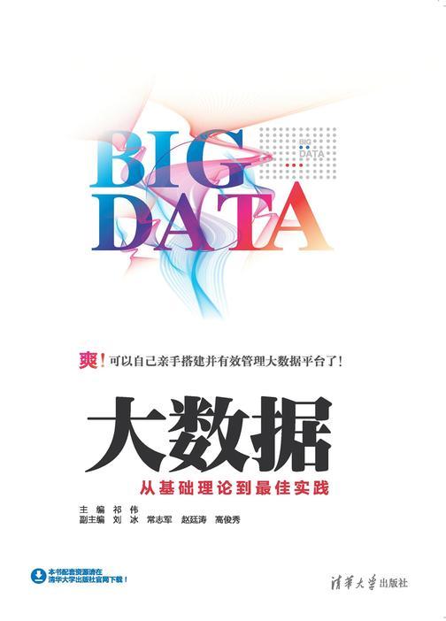 大数据:从基础理论到最佳实践