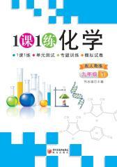 一课一练:化学(人教版九年级1)(仅适用PC阅读)