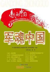 100位新中国成立以来感动中国人物书系:军魂中国
