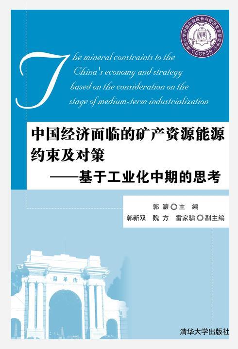 中国经济面临的矿产资源能源约束及对策——基于工业化中期的思考