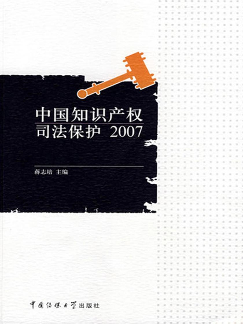 中国知识产权司法保护2007