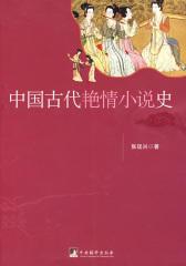 中国古代艳情小说史