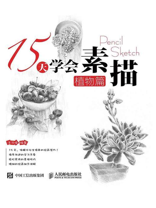 15天学会素描——植物篇