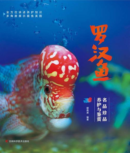 罗汉鱼:名品珍品养护与鉴赏