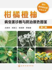柑橘橙柚病虫害诊断与防治原色图鉴(第二版)
