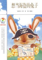 想当海盗的兔子