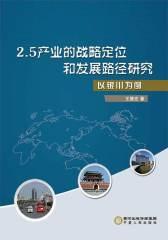 2.5产业的战略定位和发展路径研究——以银川为例