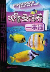 观赏鱼饲养一本通