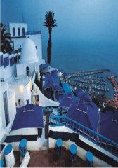 突尼斯:华丽沙与海
