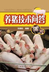 养猪技术问答