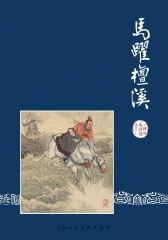 三国演义连环画·马跃檀溪