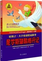 骑鹅旅行记(试读本)