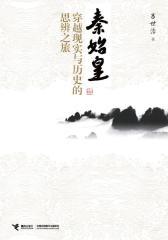 秦始皇:穿越现实与历史的思辨之旅