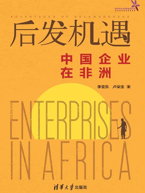后发机遇——中国企业在非洲
