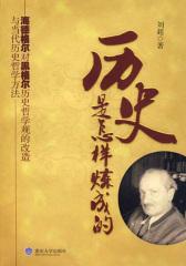 历史是怎样炼成的:海德格尔对黑格尔历史哲学观的改造与当代历史哲学方法