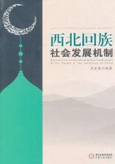 西北回族社会发展机制(仅适用PC阅读)