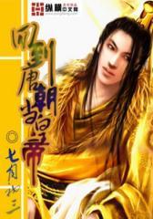 回到唐朝当皇帝(2)
