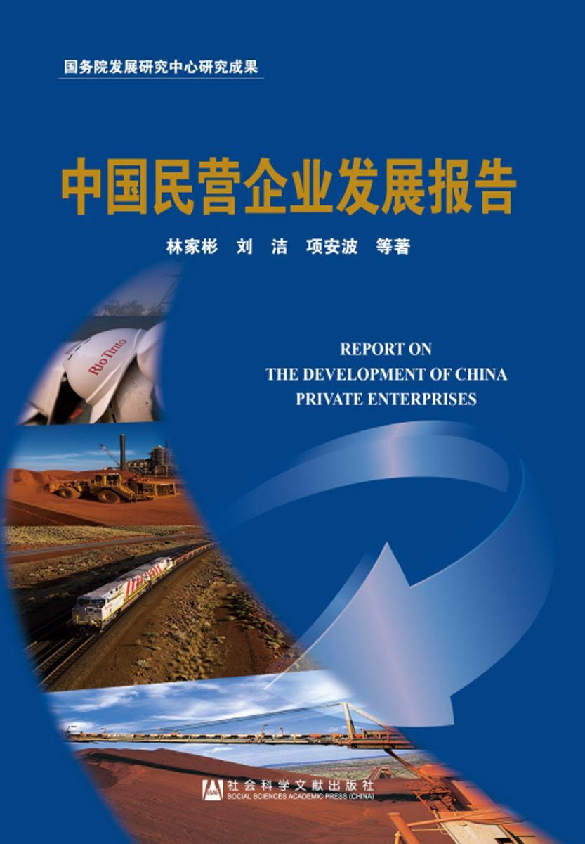 中国民营企业发展报告