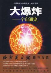 大爆炸——宇宙通史(试读本)