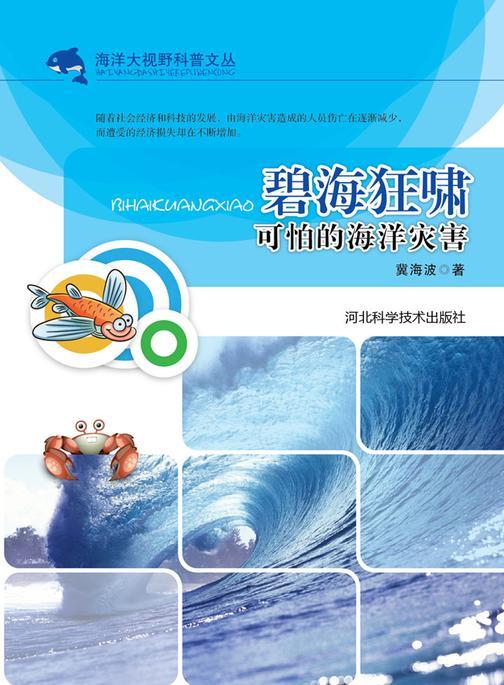 碧海狂啸:可怕的海洋灾害