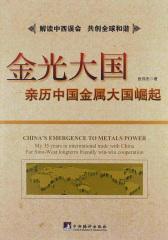 金光大国:亲历中国金属大国崛起