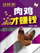 这样养肉鸡才赚钱