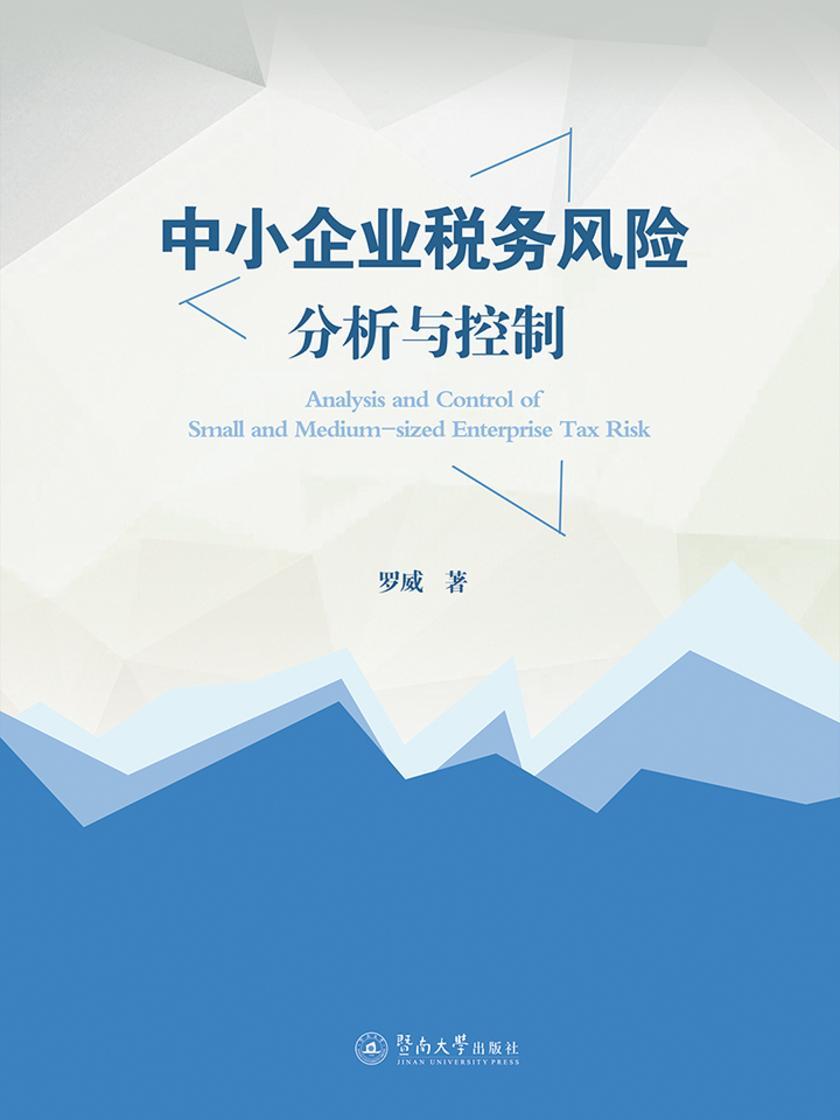 中小企业税务风险分析与控制