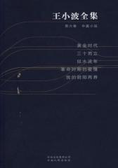 王小波全集.第六卷.中篇小说