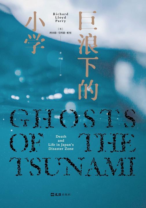 巨浪下的小学(一次本不应该发生的悲剧,一个撕开日本社会精致表象的心碎故事。《卫报》《经济学人》年度好书!)