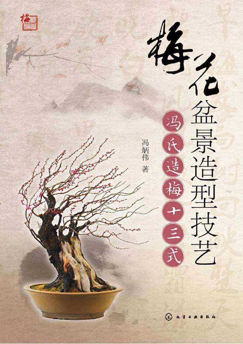 梅花盆景造型技艺:冯氏造梅十三式