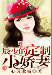 辰少的定制小娇妻3