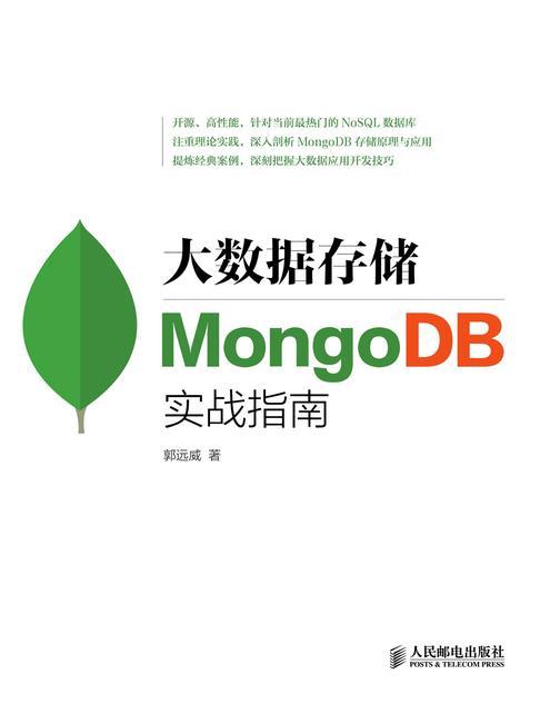 大数据存储:MongoDB实战指南