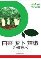 白菜 萝卜 辣椒种植技术