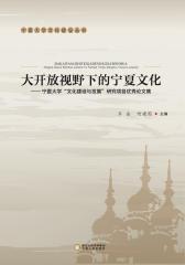 """大开放视野下的宁夏文化——宁夏大学""""文化建设与发展""""研究项目优秀论文集"""