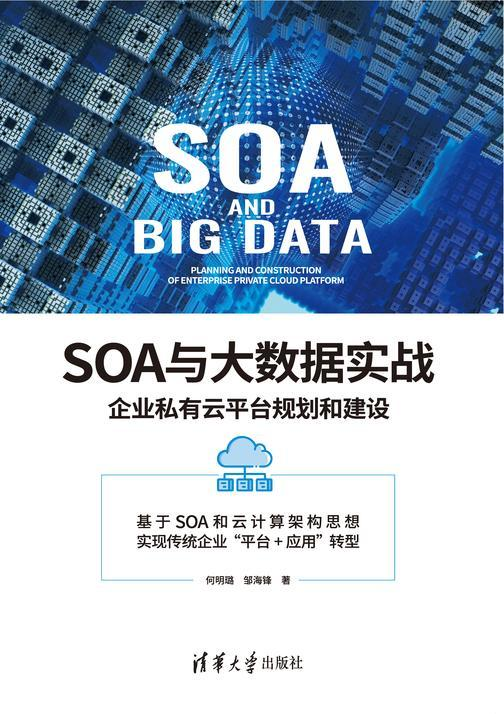 SOA与大数据实战:企业私有云平台规划和建设