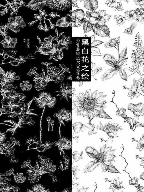 黑白花之绘:为青春绘出100朵花意